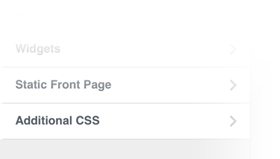 Additional WordPress CSS Option